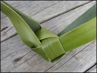 weaving a flax fantail step 11