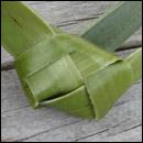 weaving a flax fantail step 14